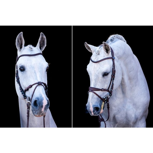 Bridle, HvE Bridle By PS of Sweden