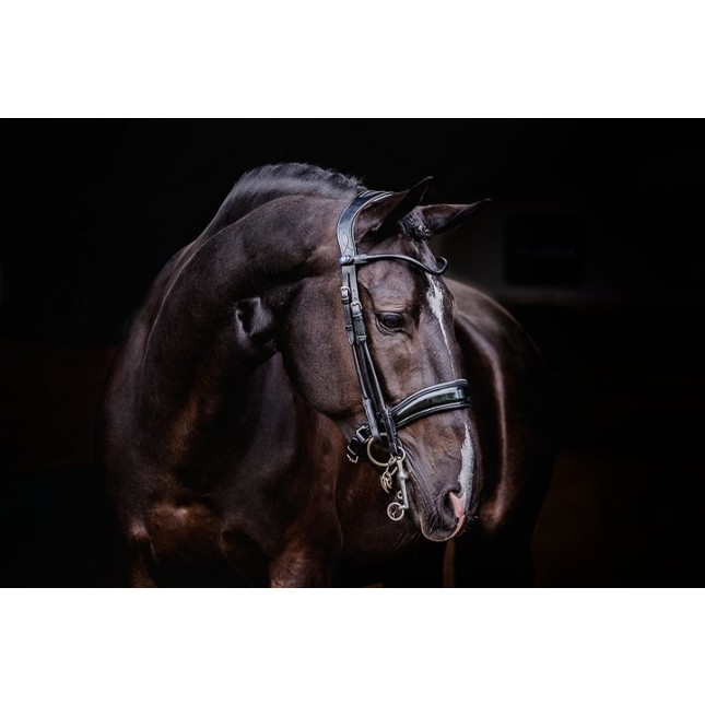 PS of Sweden Double Bridle, Passage, lacquered