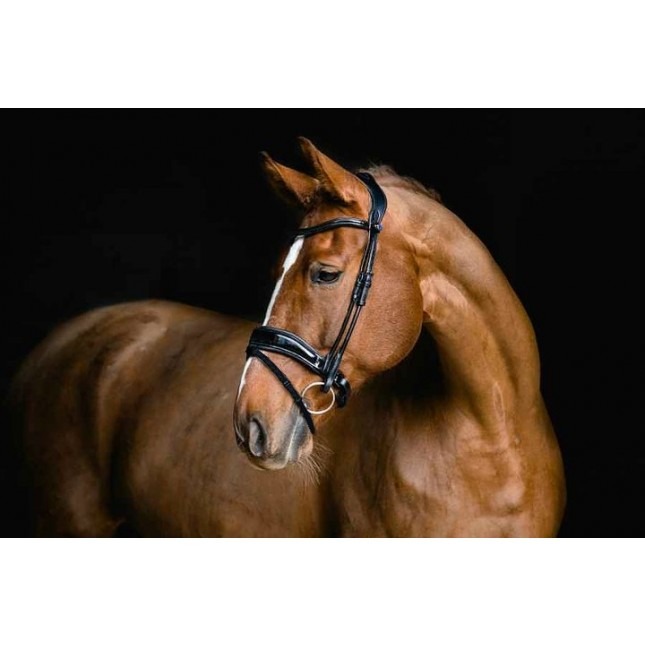 PS of Sweden Bridle, Flying Change Deluxe