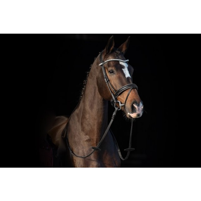 PS of Sweden Bridle, Boss