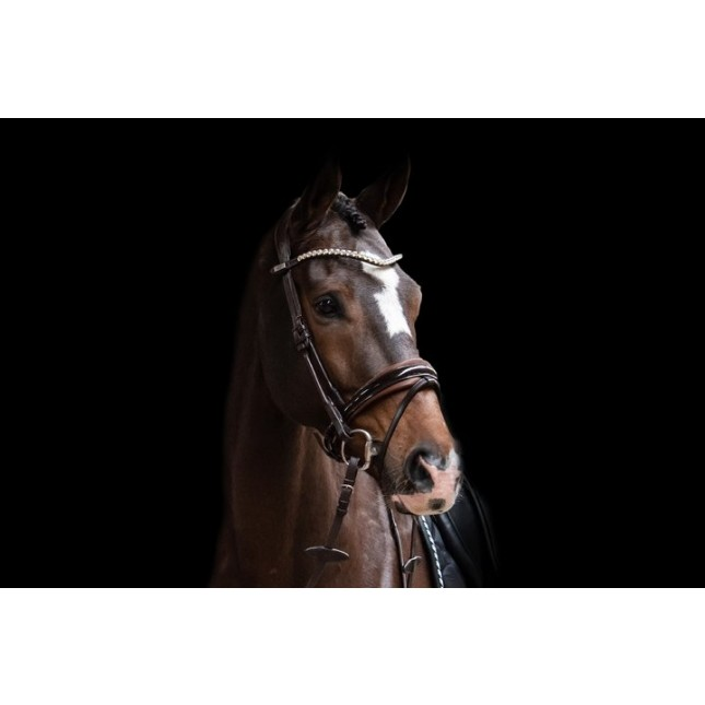 PS of Sweden Bridle, Boss lacquered