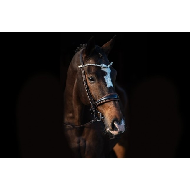 PS of Sweden Bridle, GP lacquered