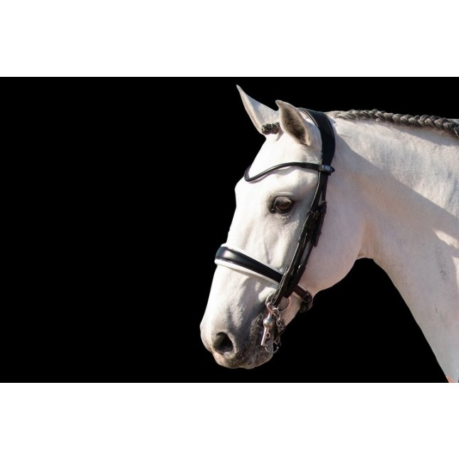 PS of Sweden Double Bridle, GP