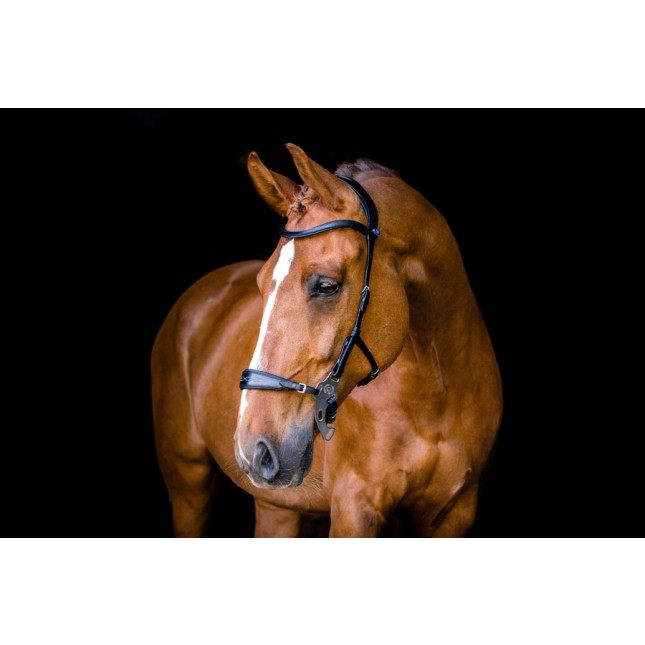 PS of Sweden Bridle, Hackamore Sport