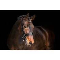 PS of Sweden Double Bridle, Boss
