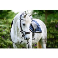 PS of Sweden Bridle, High Jump