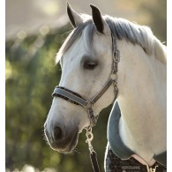 Rambo® Fashion Padded Halter