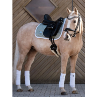 Equestrian Stockholm Dressage Saddle Pad Pistachio White COB