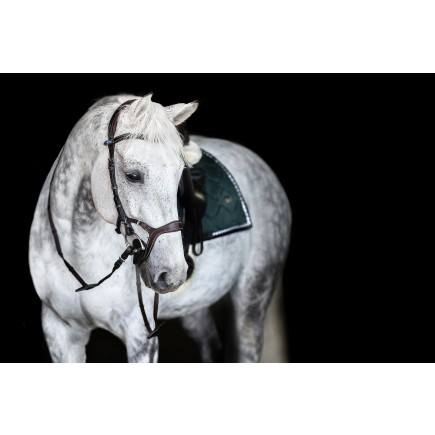 PS of Sweden Bridle, Nirak