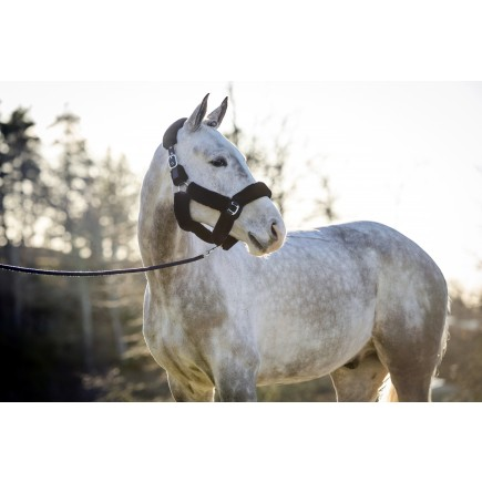 PS of Sweden Fluffy halter + lead rope, Deep Sapphire